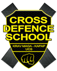 Logo: CROSS DEFENCE SCHOOL